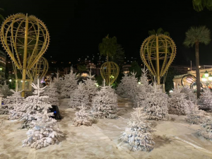 Visiting winter wonderland... but don't let the snow trick you - it is not a real one!